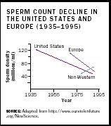 Sperm Count Decline in the United States and Europe (1935-1995).