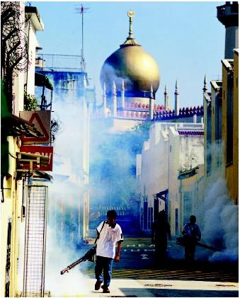 Fumigators walking down a street in the Sultan Mosque area of Singapore and spraying a pesticide to rid the area of mosquitoes. (©Steve Raymer/Corbis. Reproduced by permission.)