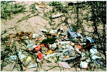 Garbage strewn across a sandy area. (S. Barnett, United States Environmental Protection Agency. Reproduced by permission.)
