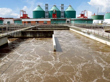 Sedimentation Water Effects Environmental Disasters